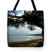 A Park With Tranquil Moments Tote Bag