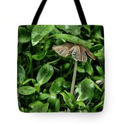 A Pat On The Head Tote Bag