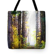 A Path In The Pines Tote Bag