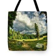 A Peacful Yosemite Day Tote Bag