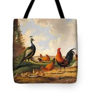 A Peacock And Chickens In A Landscape  Tote Bag