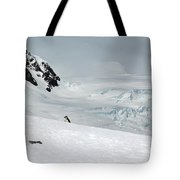 A Penguin's World Tote Bag