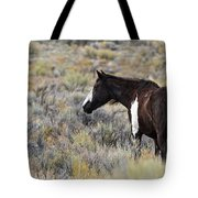 A Penny For Your Thoughts Tote Bag