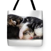 A Pile Of Pussies Tote Bag