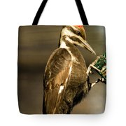 A Pileated With Intent Tote Bag