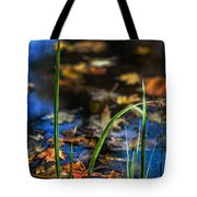 A Place Called Home Tote Bag