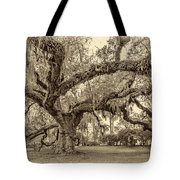 A Place For Dying Sepia 2 Tote Bag