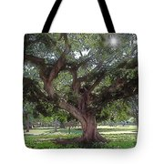 A Place In The Sun Tote Bag by Terry Reynoldson