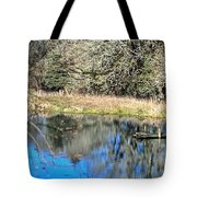 A Place To Ponder 055 Tote Bag