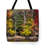 A Place To Relax In The Adirondacks Tote Bag
