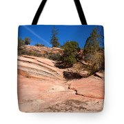 A Pool Of Rock Tote Bag