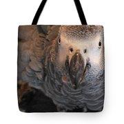 A Portrait Of Ziggy Tote Bag