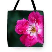 A Pretty Pink Rose Tote Bag