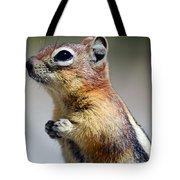 A Profile In Chipmunk Tote Bag
