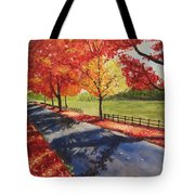 A Quiet Autumn Road Tote Bag