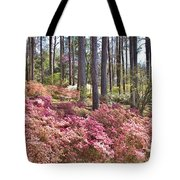 A Quiet Spot In The Woods Tote Bag