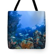 A Quiet Underwater Day Tote Bag
