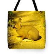 A Rabbit In My Path Tote Bag