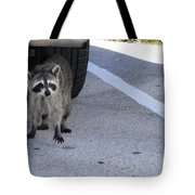 A Raccoon In Florida Tote Bag