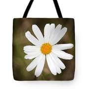 A Rain Spattered Daisy Tote Bag