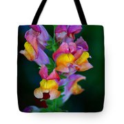 A Rainbow Flower Tote Bag