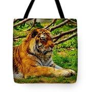 A Real Detroit Tiger Tote Bag