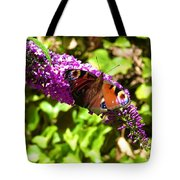 A Red Admiral On A Purple Budlier Tote Bag