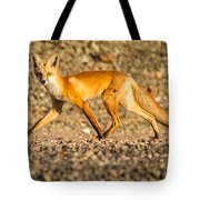 A Red Fox Tote Bag