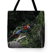 A Red Green And Blue Macaw On A Branch In The Jurong Bird Park Tote Bag