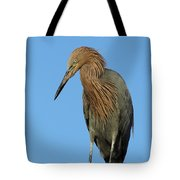 A Redhead On A Roof Tote Bag