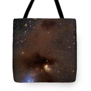 A Rich Region Of Reflection Tote Bag