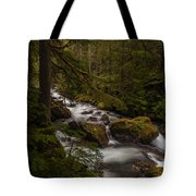 A River Passes Through Tote Bag by Mike Reid