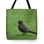 A Robin In June Tote Bag