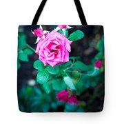 A Rose Blooms Tote Bag