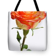 A Rose Is A Rose Is A Rose Tote Bag by Juergen Roth