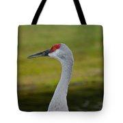 A Sandhill Crane Tote Bag