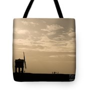 A Sense Of Perspective Tote Bag