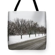 A Sequence Of Trees Tote Bag