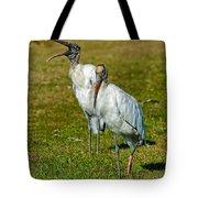 A Serious Woodstork Tote Bag