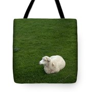 A Sheep Stands In A Green Prairie Tote Bag