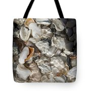 A Sheller's View Tote Bag
