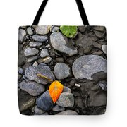 A Sign Of Fall Tote Bag