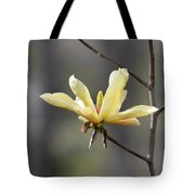 A Single Bloom Tote Bag