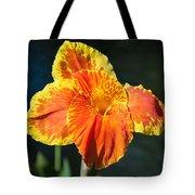 A Single Orange Lily Tote Bag