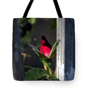 A Single Rosebud Tote Bag