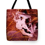 A Skull In The Rocks Tote Bag