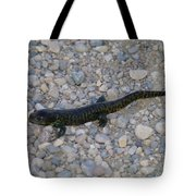 A Slow Salamander  Tote Bag