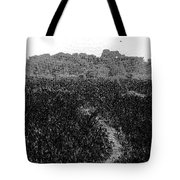 A Small Path Through Very Tall Grass Inside The Okhla Bird Sanctuary Tote Bag