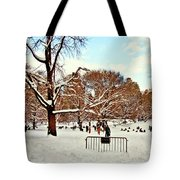 A Snow Day In Central Park Tote Bag