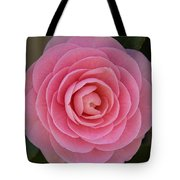 A Soft Blush Tote Bag